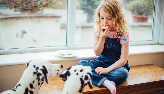 Das Bild zeigt ein Mädchen mit einem Dalmatiner. Es ist eine Metapher für das KJP Angebot in der Praxis für Familiengesundheit in Essen. MVZ für Innere Medizin, Endokrinologie, Diabetologie und Kinder- und Jugendpsychiatrie und -psychotherapie - KJP & Hausärzte Essen
